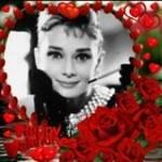 Rosa Maffione Profile Picture