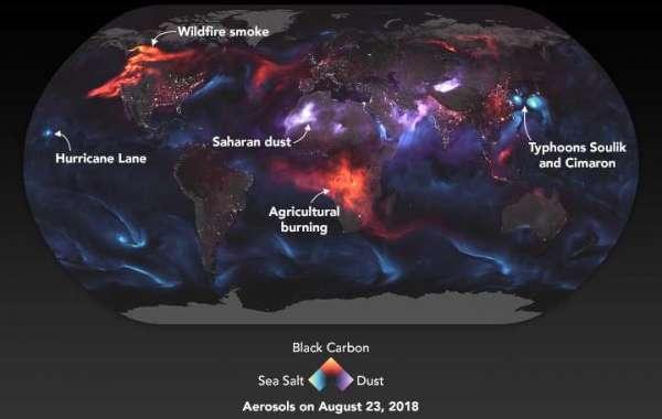 L'inquinamento rende stupidi? Nuovi studi sembrano confermarlo
