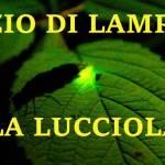 LA LUCCIOLA -  NEGOZIO DI LAMPAD Profile Picture