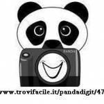 Pandadigit Profile Picture