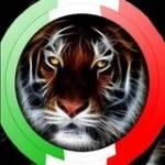 Gianfranco Maglione Profile Picture