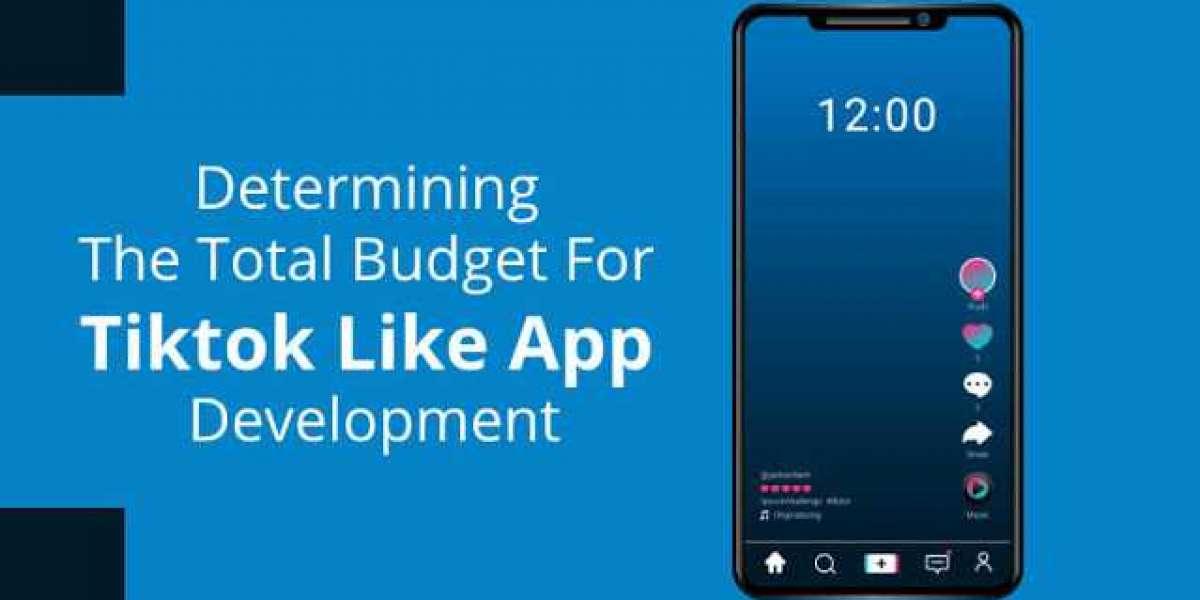 Determining The Total Budget For Tiktok Like App Development